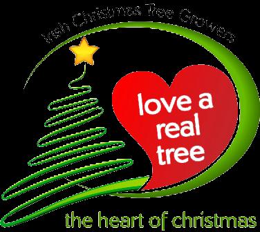 real-xmas-tree